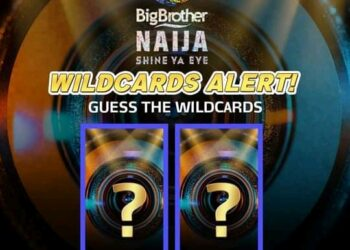 BBNaija Maria and Pere unvailed as Wildcards